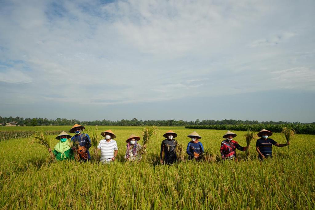 Bank Sumut Salurkan CSR di Agrowisata Paloh Naga